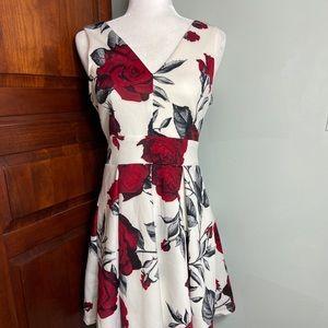 NWOT boutique dress. Size M